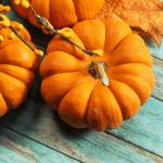 Teal Pumpkins and Non-food Treats