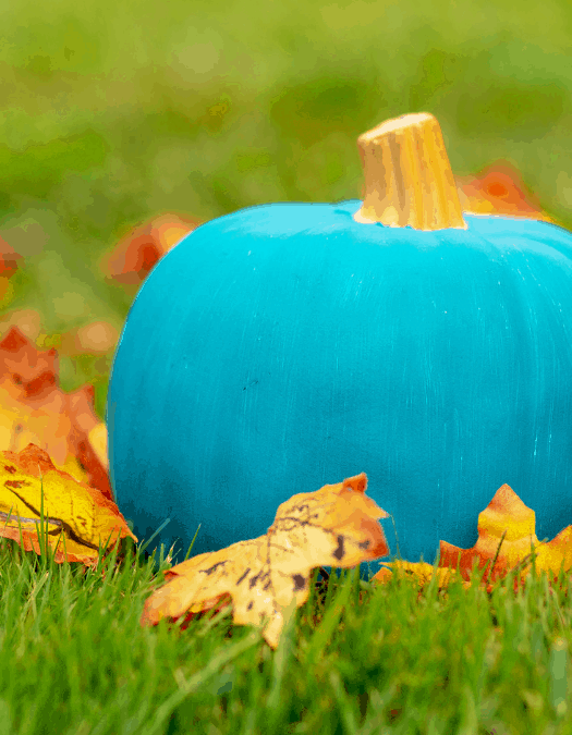 Teal Pumpkins & Non-Food Halloween Treats