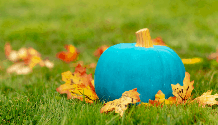 Teal Pumpkins and Non-food treats post