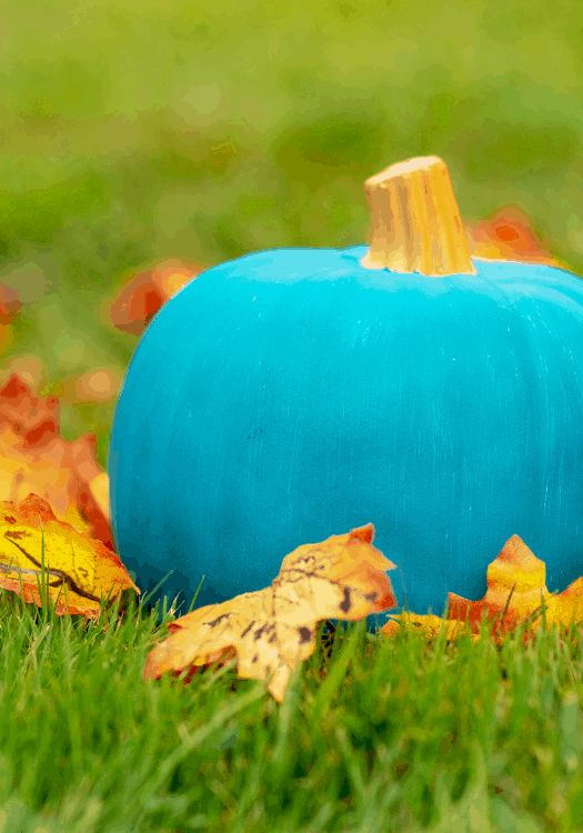Teal Pumpkins & Non-Food Halloween Treats | Tealmama Do you know the significance of teal pumpkins? Find out here along with a list of ideas for non-food treats to give out to trick-or-treaters on Halloween.